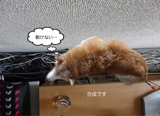 17日ブログ8.jpg