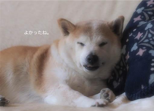 28日ブログ6.jpg