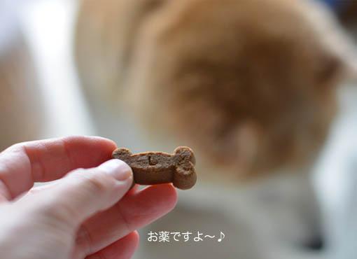30日ブログ2.jpg