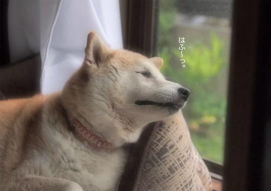 15日ブログ4.jpg