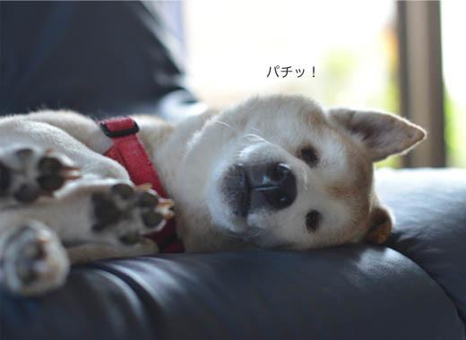 24日ブログ6.jpg