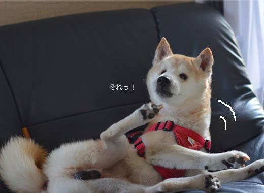 24日ブログ8.jpg