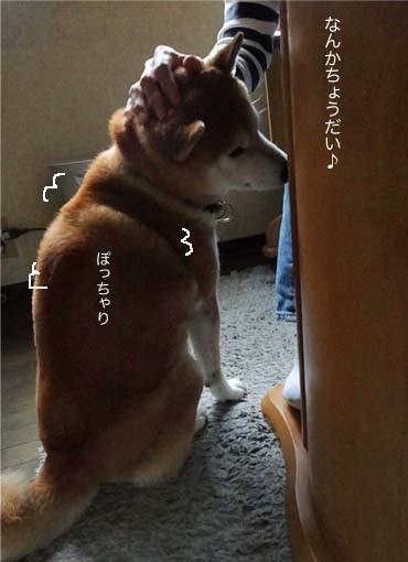 2日ブログ3.jpg