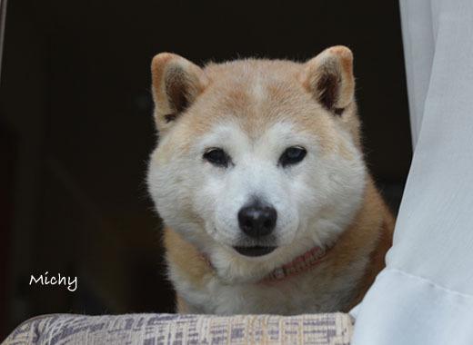 8日ブログ4.jpg
