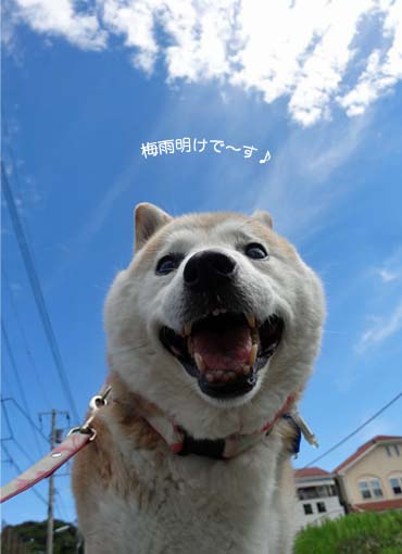 19日ブログ2.jpg