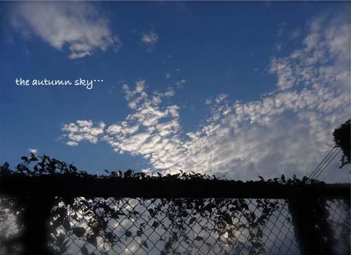 22日ブログ1.jpg