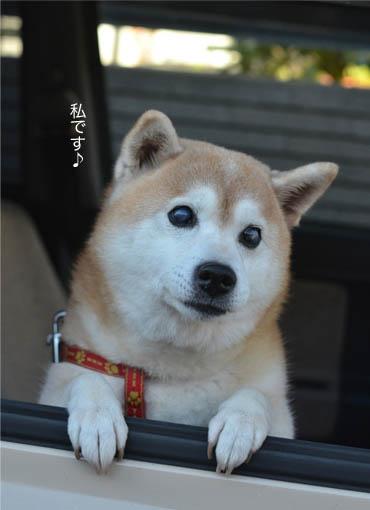 25日ブログ3.jpg